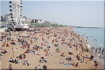 TQ3103 : Brighton Beach by N Chadwick
