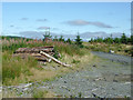 SN8255 : Forestry on Pen y Cnwc, Powys by Roger  Kidd