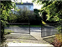 H4572 : Railings and shadows, Omagh by Kenneth  Allen