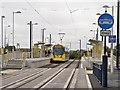SJ9299 : Ashton West Tram Stop by David Dixon
