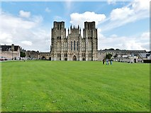 ST5545 : The classic view of Wells Cathedral by Derek Voller