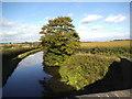 SO8697 : Bridge View by Gordon Griffiths