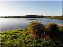 H0811 : St John's Lough by Kenneth  Allen