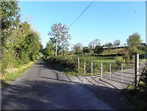H0310 : Road at Annadale by Kenneth  Allen