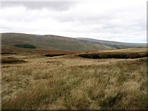 NY5108 : The upper slopes of Brown Howe by David Purchase