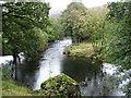 SD2095 : The River Duddon near Hall Bridge by David Purchase