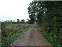 TF1122 : Track off Dyke Drove by JThomas