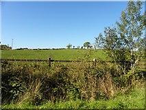 G9713 : Derrintober Townland by Kenneth  Allen