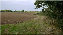 TL0393 : Arable land near Woodnewton by Jonathan Billinger