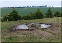 TF3839 : Cattle trough near Cut End car park by Mat Fascione