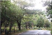 SH6044 : Cross roads ahead at Pont Talyrni by John Firth