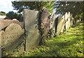 SX3760 : Gravestones, Landrake by Derek Harper
