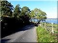 C3126 : Road at Grange, Inch Island by Kenneth  Allen