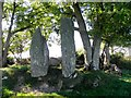 C3223 : Standing stones and Megalithic Tomb, Inch Island by Kenneth  Allen