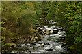 SH5946 : Afon Glaslyn, Gwynedd by Peter Trimming