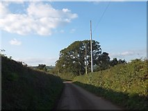 SS6712 : Crossgate crossroads and phone mast by David Smith