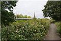 SJ6187 : Footpath by the Mersey by Bill Boaden