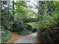 SW7730 : Footbridge across Penjerrick Hill by Steve  Fareham