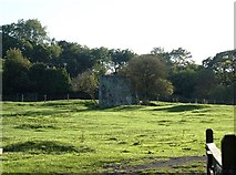 SX8678 : Field of Palace Farm with remains of the Bishop's Palace by David Gearing