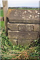 SE3589 : Benchmark on wall opposite entrance to Solberge Hall by Roger Templeman