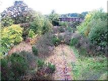 NO3700 : Disused railway by Alex McGregor