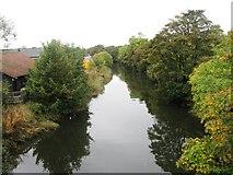 NO3700 : River Leven by Alex McGregor