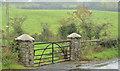 J1944 : Field gate, Castlevennon, Banbridge by Albert Bridge