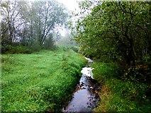 H5776 : Burn, Loughmacrory / Altdrumman by Kenneth  Allen