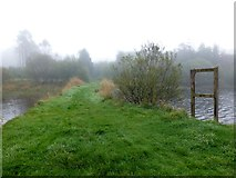 H5776 : Grassy causeway, Loughmacrory Lough by Kenneth  Allen