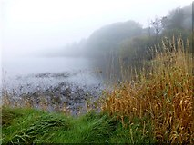 H5776 : Misty, Loughmacrory Lough by Kenneth  Allen