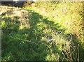 SX3362 : Tangle of wire by path near Blunts by Derek Harper