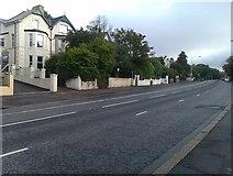 J3774 : Upper Newtownards Road by David Martin