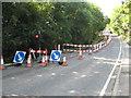 TQ5393 : Harold Hill: Noak Hill Road by Nigel Cox