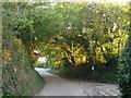 SX3461 : Lane junction, Tideford Cross by Derek Harper