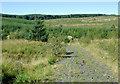 SN8156 : Forestry road into Cwm Cloddiad, Powys by Roger  Kidd
