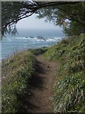 SW7011 : The Lizard: the coast path approaches Lizard Point by Chris Downer