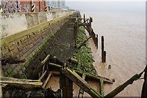 TA0827 : The former jetty along the River Humber by Ian S