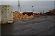 TA0827 : Bio fuel at William Wright Dock, Hull by Ian S