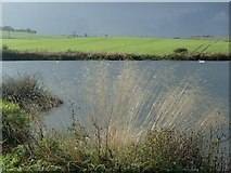 SK4569 : Meadow Flash, Carr Vale reserve by Andrew Hill