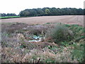 SJ7178 : Overgrown pond in stubble field by Round Wood by Maggie Cox