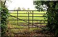 J4681 : Two gates, Crawfordsburn (1) by Albert Bridge