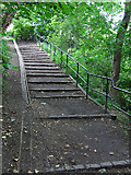 NT2273 : Water of Leith path by Thomas Nugent