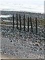SD2062 : Seven posts near Far South End, Walney Island by Rob Farrow