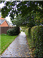 TM3763 : Footpath to Ashfords Close by Adrian Cable