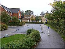 TM3763 : Ashfords Close, Saxmundham by Adrian Cable