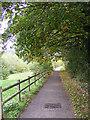 TM3763 : Footpath to Brook Farm Road by Geographer
