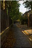 TQ3581 : Cobbled path, Stepney Green Gardens by Julian Osley