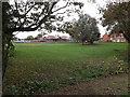 TM3863 : Green at Abbotts Grange housing estate by Geographer