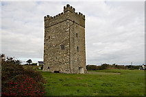 T0005 : Castles of Leinster: Ballyhealy, Wexford (2) by Mike Searle