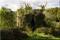 X0580 : Castles of Munster: Cornaveigh, Cork by Mike Searle